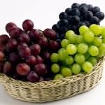 Выращивание винограда. Как вырастить виноград? +ВИДЕО