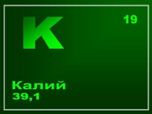 kalij-v-organizme