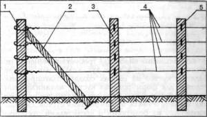 Схема одноплоскостной шпалеры: 1-крайняя опора в ряду. 2-упор (якорь). Наклонная стойка для предотвращения заваливания опорной стойки. 3-промежуточная опора в ряду. 4-проволока или трос. 5- крепление проволоки на опоре.