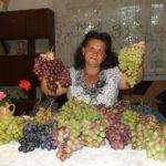Фильм Натальи Лариасовны Пузенко Разумная обрезка и формировка винограда