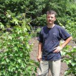 Обрезка неправильно сформированного куста винограда ВИДЕО