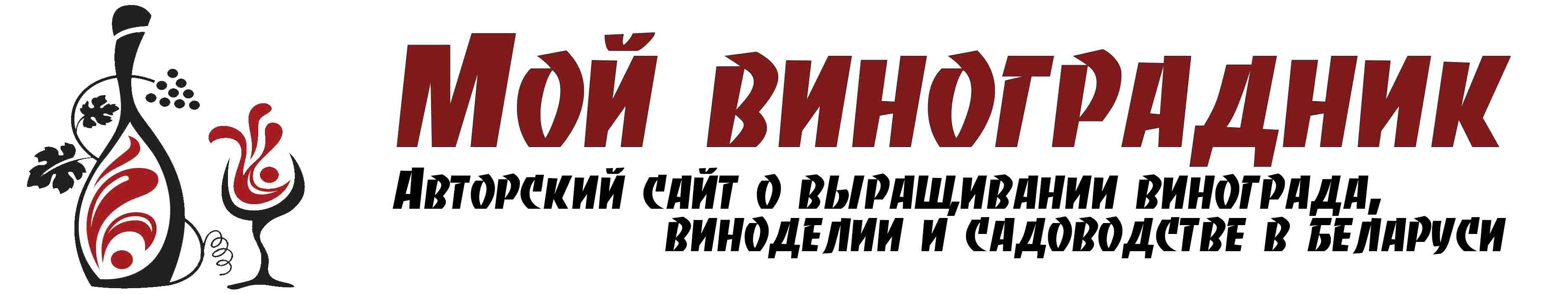 ВИНОГРАДНИК.by